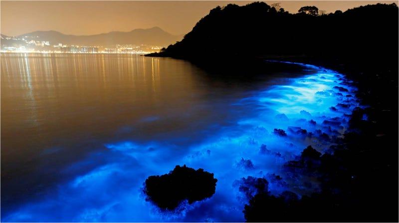 Illustration for article titled Este agua fluorescente es en realidad producto de la contaminación