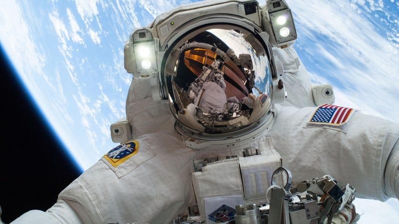 Illustration for article titled La NASA busca astronautas para la misión a Marte. Estos son los requisitos