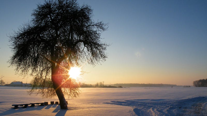 Winter is here! Solstice marks shortest day of year