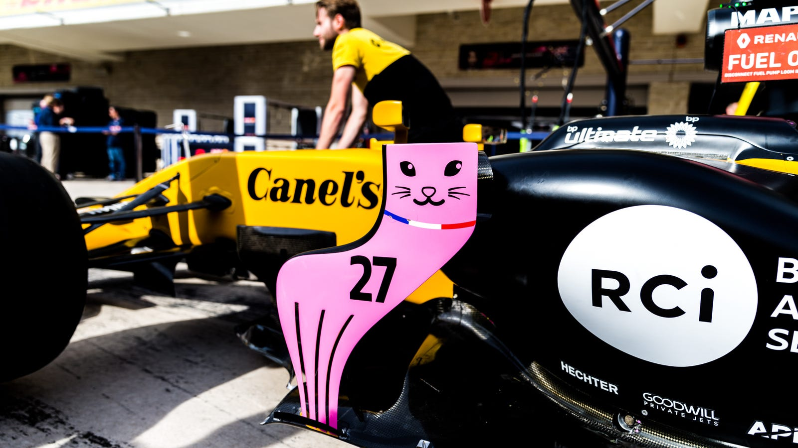 There Are Cats On This Formula One Car