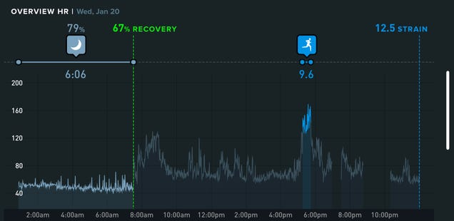 What It s Like to Track Your Recovery With the WHOOP Strap