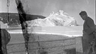 Illustration for article titled Encuentran congelados en la Antártida negativos de hace casi 100 años