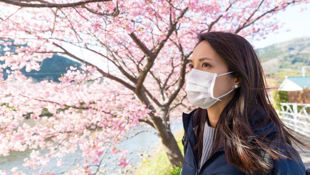 If You Have Allergies, Don t Ditch Your Mask Yet