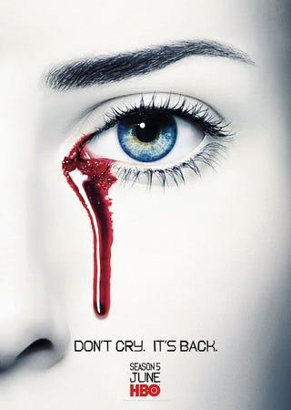 Illustration for article titled True Blood Season 5 Poster