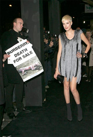 Illustration for article titled Agyness Deyn Smiles, Poses Despite PETA Protester
