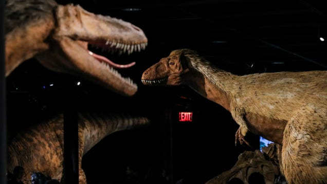 2.5 Billion T. rex May Have Roamed Earth