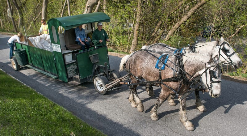 Illustration for article titled How Can I Get This Horse-Powered Garbage Truck To My Neighborhood?