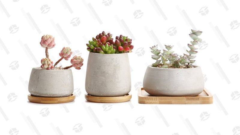 Succulent Cactus Pot, Concrete Planter Pot | $12 | Amazon | Code RACCCP01