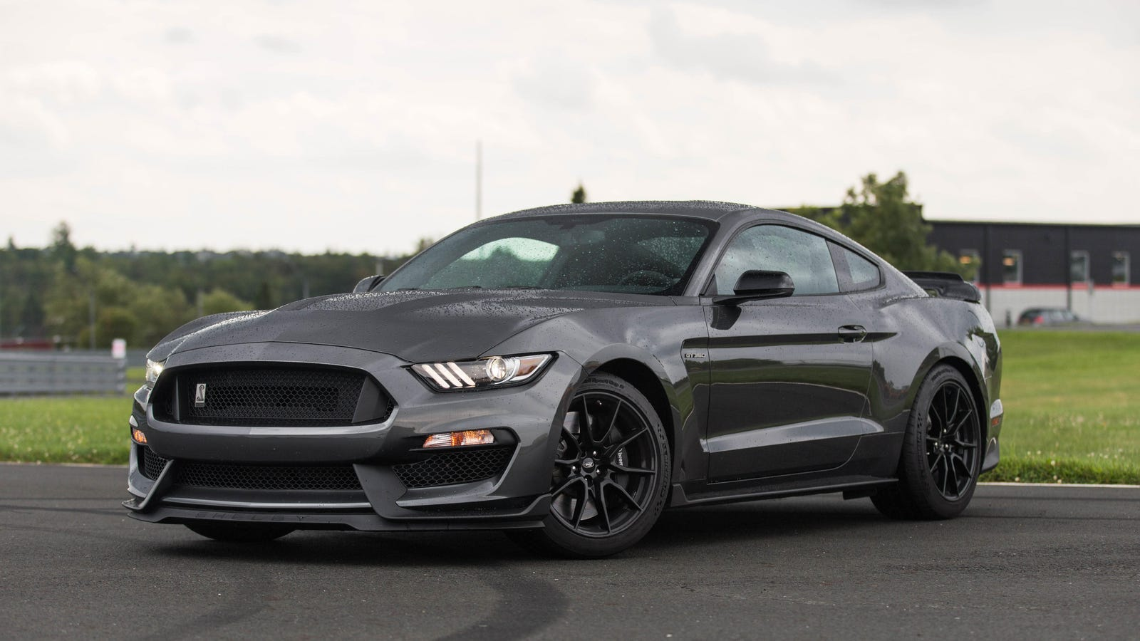drive   ford mustang shelby gt