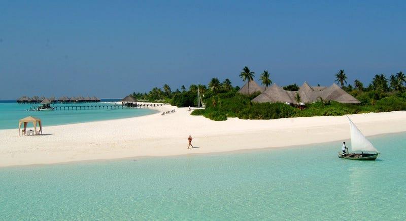 Este resort de lujo en las Maldivas ofrece dos semanas con todo pagado a cambio de cuidar tortugas