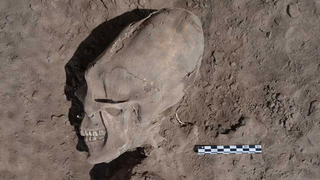 Illustration for article titled Deformed skulls discovered in 1,000-year-old Mexican cemetery