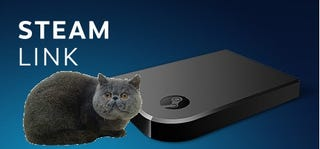 Illustration for article titled Steam Link - The PHC Review (With Cat Pictures)