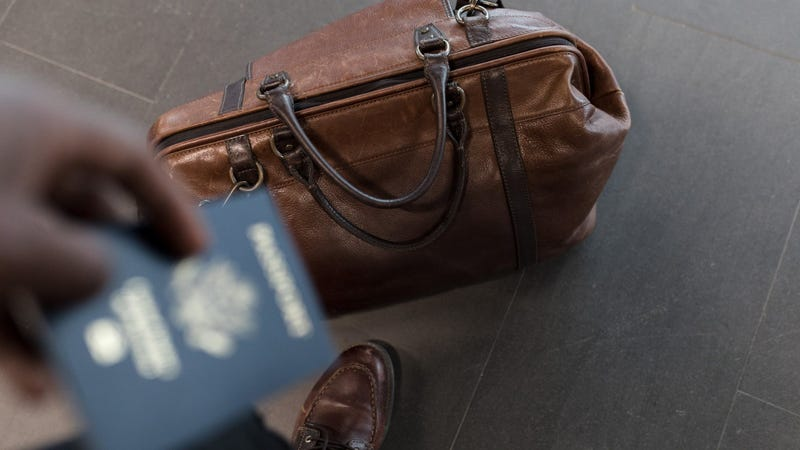c1e788a99c Illustration for article titled Share Checked Luggage With Your Travel  Companion in Case a Bag Gets