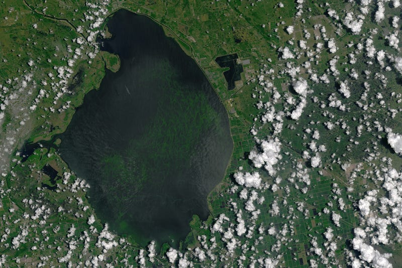 Images: NASA Earth Observatory