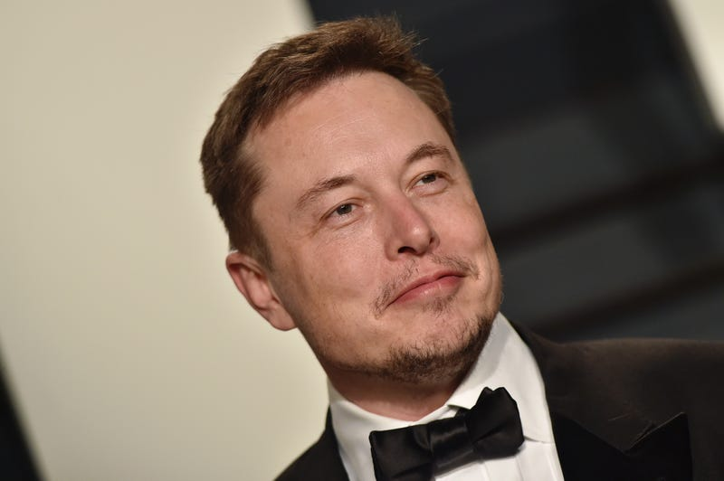 SpaceX/Tesla Inc. CEO Elon Musk (Axelle/Bauer-Griffin/FilmMagic)