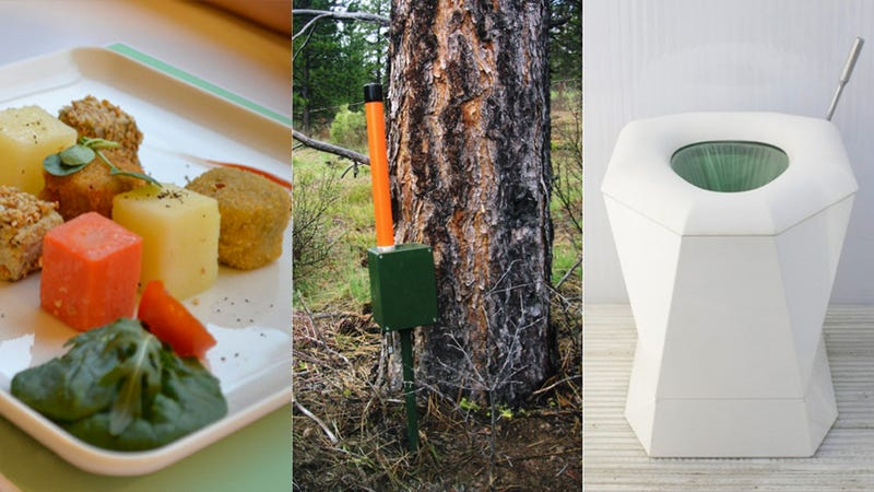 Can Bugs, Toilets, and Mushrooms Change the World?