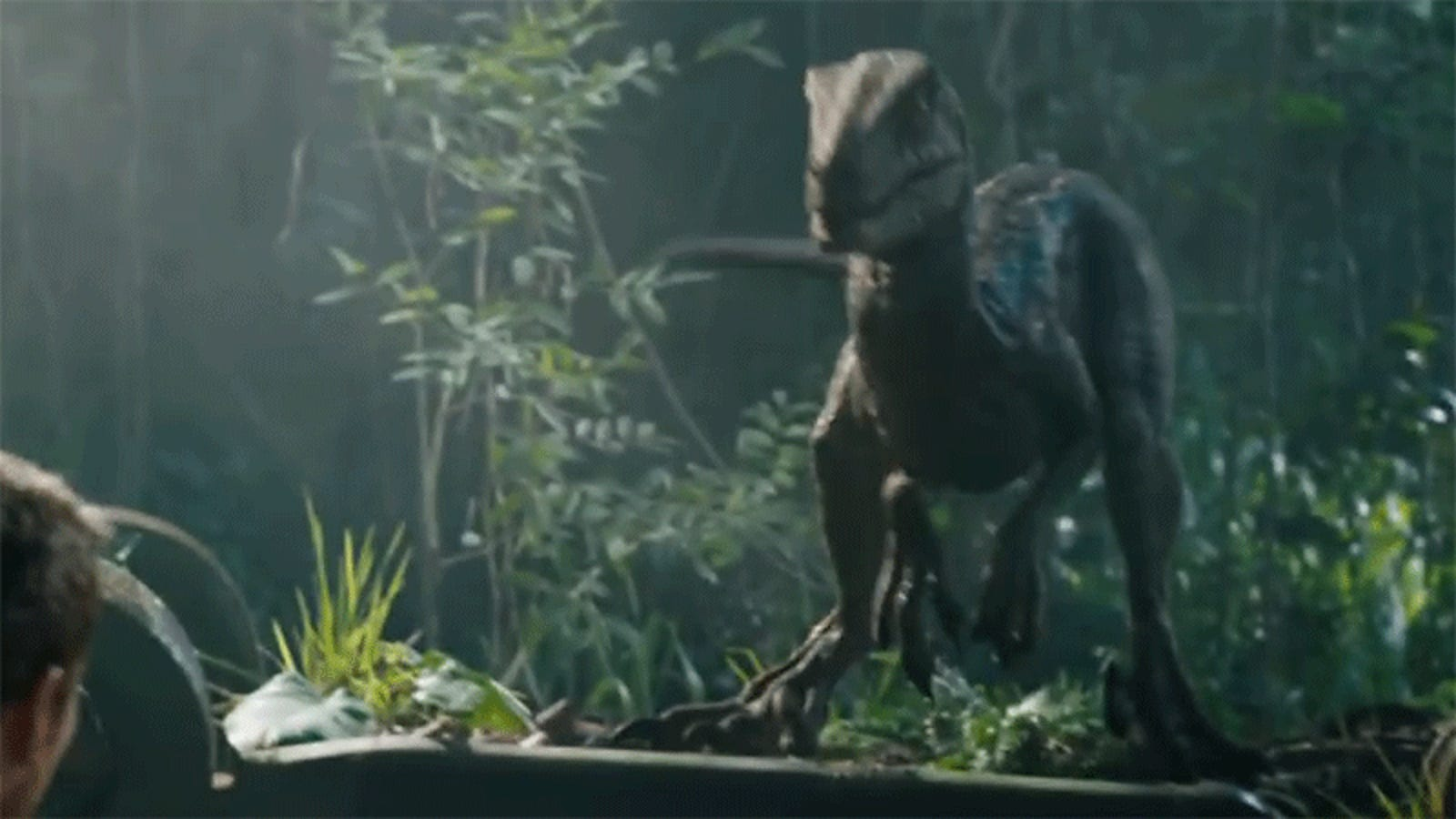 Review Jurassic World Fallen Kingdoms Blue Raptor Is Queen