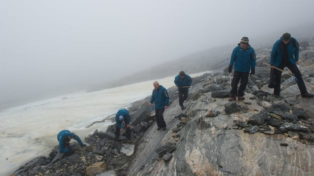 Melting Ice Exposes Mountain Pass Used by Vikings, Including Ancient Dog and Leash
