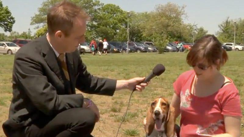 Illustration for article titled Basset hound aficionados Julie Klausner and Ted Leo go the dogs at Howlabaloo