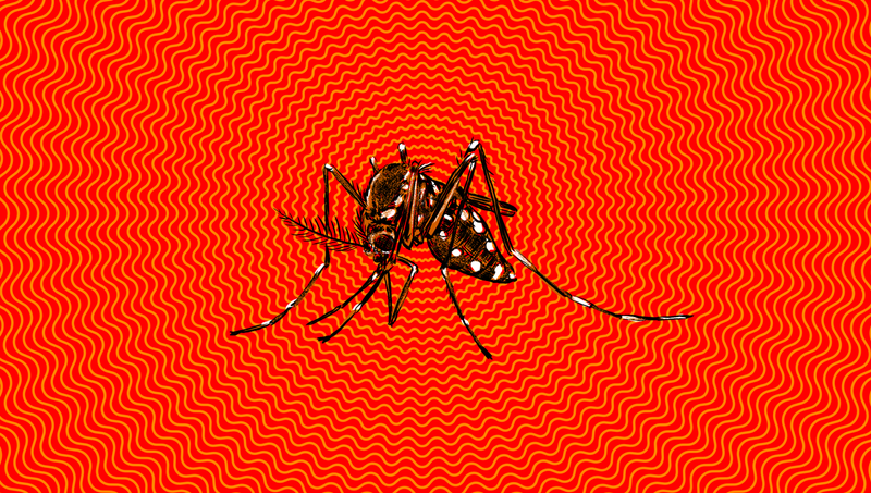 Illustration for article titled How Worried Should You Be About the Zika Virus?