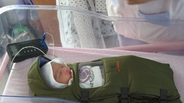 The Embrace Infant Warmer Acts As A Cheap Incubator For Developing Countries