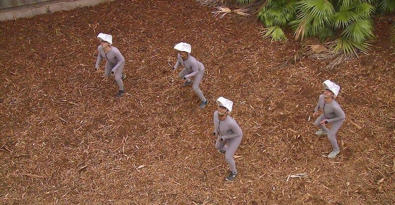 Los cuatro velociraptores de Jurassic World.