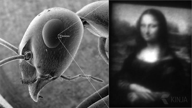 Illustration for article titled La pintura más pequeña del mundo es esta Mona Lisa