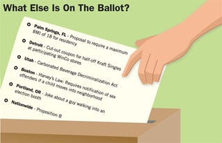 Illustration for article titled What Else Is On The Ballot?