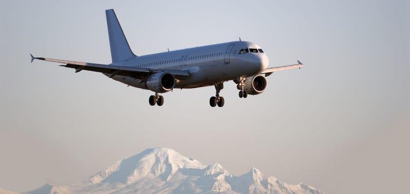 Illustration for article titled Así es el Airbus A320 de Germanwings que se ha estrellado en Francia