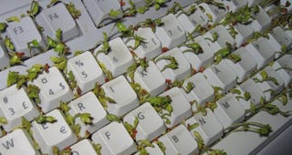 Keyboard with Plants Growing Inside is More Gross Than Cool