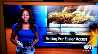 Illustration for article titled Reporter Who Quit On Live TV Is So Happy About Weed Legalization