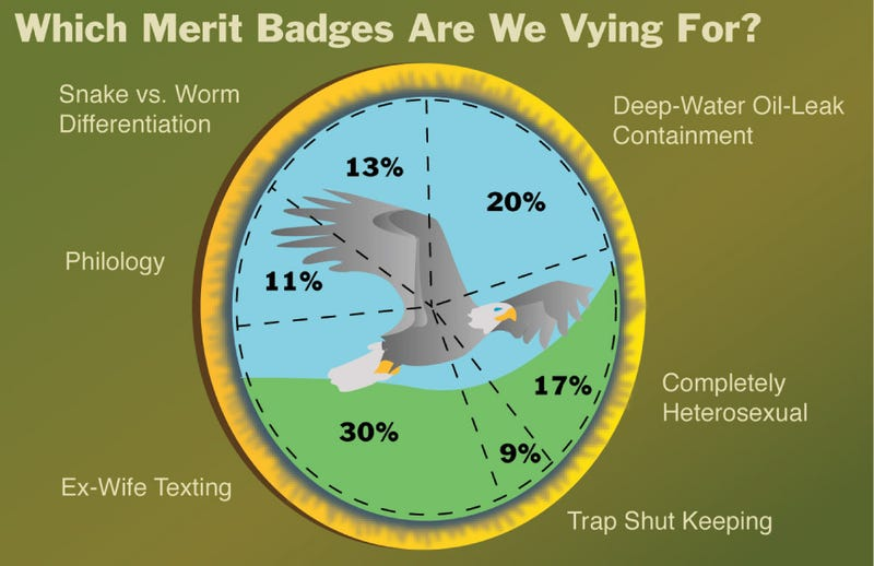 Illustration for article titled Which Merit Badges Are We Vying For?