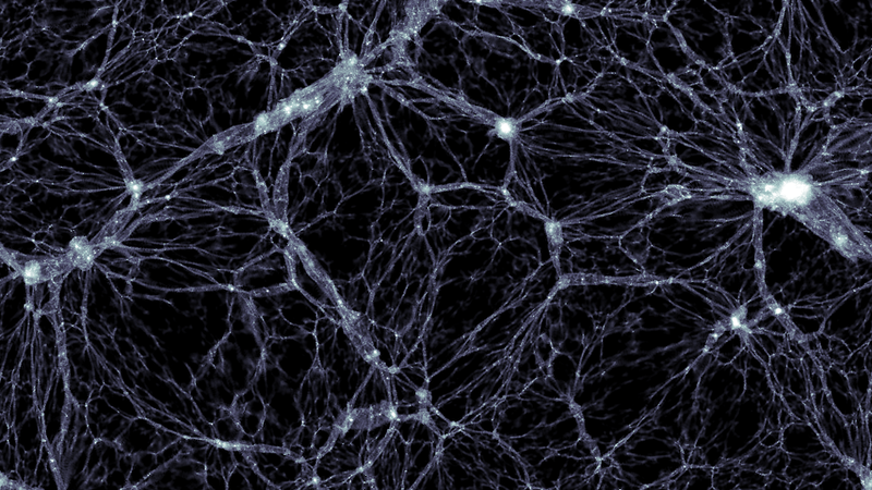 Dark matter distribution as simulated by Illustris. (Image: Markus Haider / Illustris collaboration)