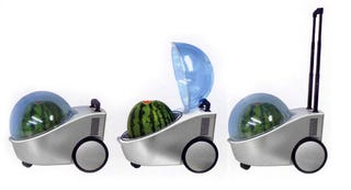 Illustration for article titled This Is the Watermelon Cooler You Were Looking For