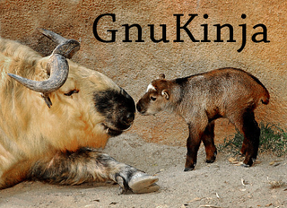 Illustration for article titled I know the topic of the day is GnuKinja but