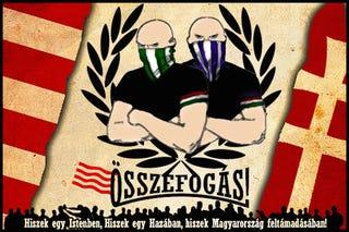 Illustration for article titled Magyarország összefog – lilák, zöldek és mindenki egy zászló alatt