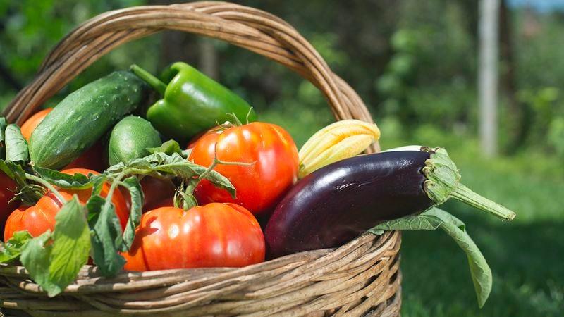 Illustration for article titled Do You Deserve A Free Big Vegetable?