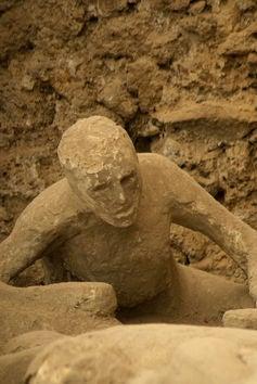 Pompeii Animal Bodies