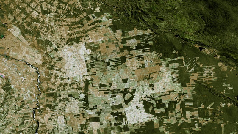 Deforestation and subsequent development in Bolivia. (Image: NASA Scientific Visualization Studios)