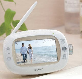 Illustration for article titled Sony's XDV-W600 Portable TV Does Something Like No Other Bravia: Goes Bathing