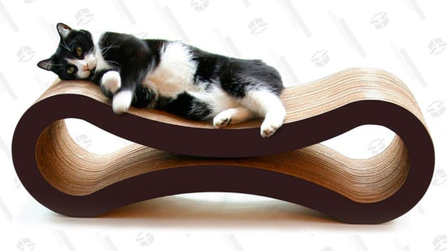 This Discounted Lounger Will Make Your Cat Happy, But Won t Make Her Love You