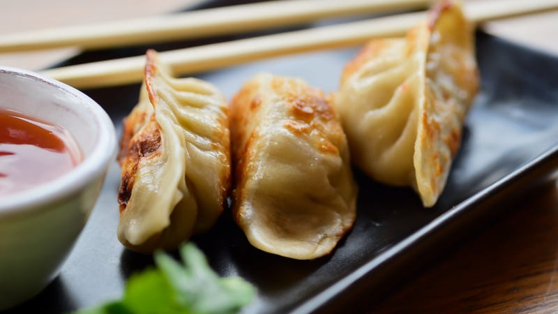 Last Call: Dinosaur potstickers are the best dino-shaped food since cafeteria nuggets