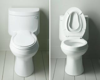 The Post Where I Turn A Kohler Transitions Quiet Close Toilet Seat