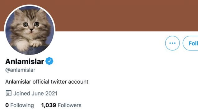 Twitter Verifies at Least Six Fake Accounts Including This Cat