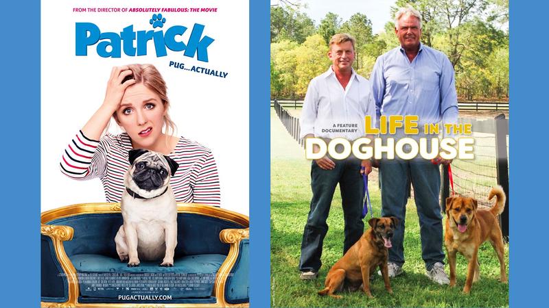 Illustration for article titled Some Really Good Doggo on Netflix