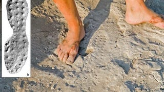 Archaeologists working in the Golan heights have discovered 2,000-year-old imprints made by the boots of Roman soldiers. The imprints were made in the still-wet mortar of the fortifications at the Hellenistic city of Hippos. The boots, including one that was a size 9, left studded footprints
