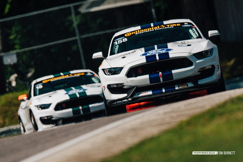 Illustration for article titled Crazy Fast Shelby Mustang GT350R-Cs Dominate Lime Rock