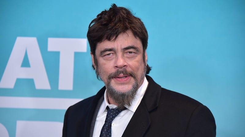 Illustration for article titled Benicio del Toro is Swiper in the Dora The Explorer movie