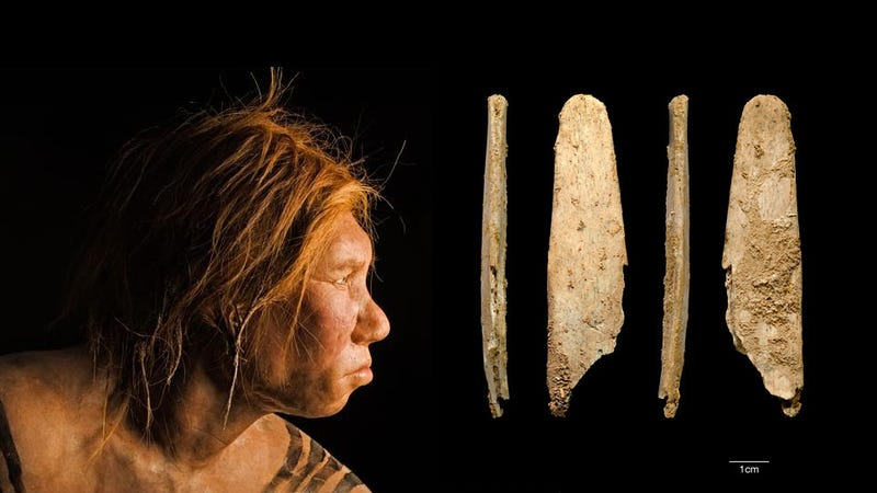 Illustration for article titled Early Humans May Have Ripped Off Neanderthal Technology