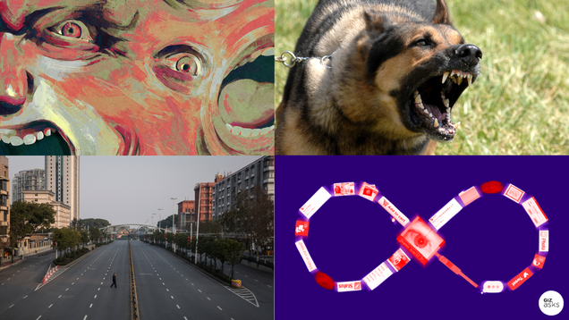 Stressed Pooches, Global Outbreak, and Immortality: Best Gizmodo Stories of the Week